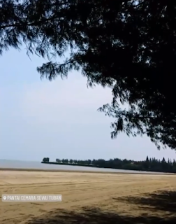 pantai cemara tuban by cahyadwip