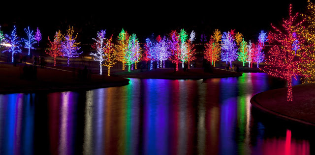 Outlining your landscape features with LED colored lighting can drastically upgrade your Christmas light display.