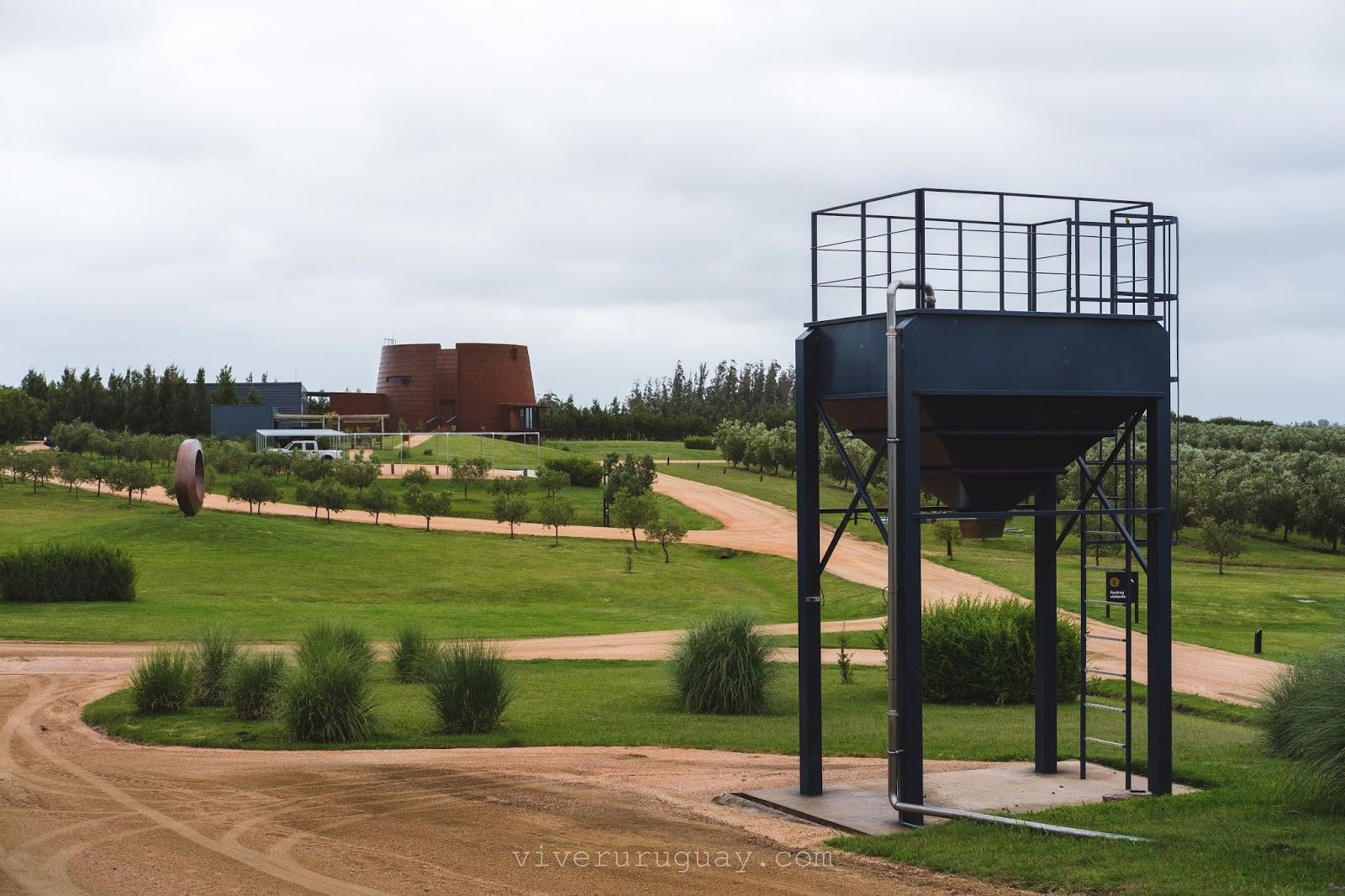 Visita fabrica azeite de oliva no Uruguai