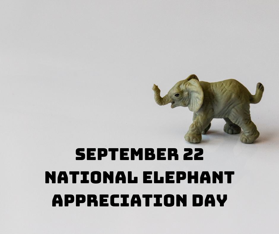 National Elephant Appreciation Day Wishes Images download