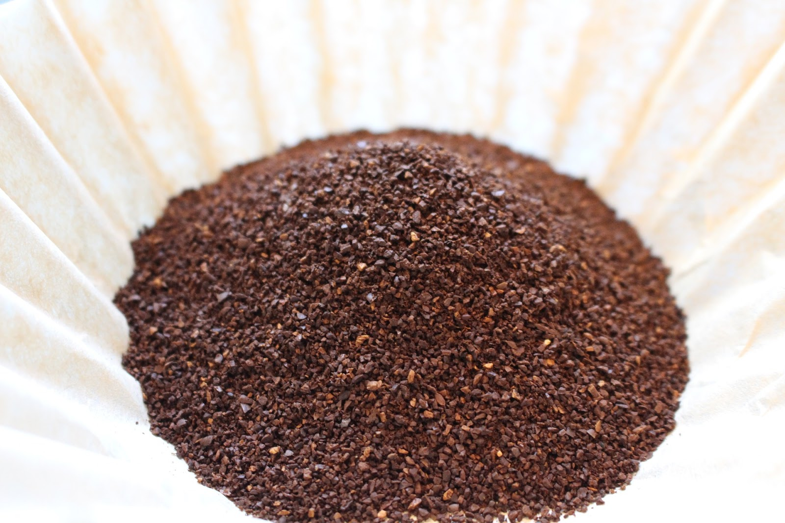 Myth Or Miracle Coffee Grounds Eggshells And Epsom Salts