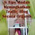 8 Tips Mudah MeningkatkanTraffic Blog Secara Organik