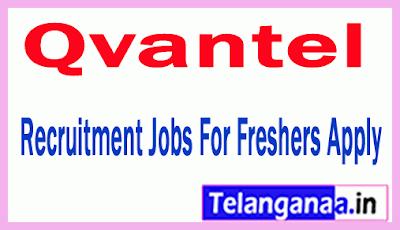 Qvantel Recruitment Jobs For Freshers Apply