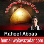 http://www.humaliwalayazadar.com/2017/10/raheel-abbas-nohay-2018.html
