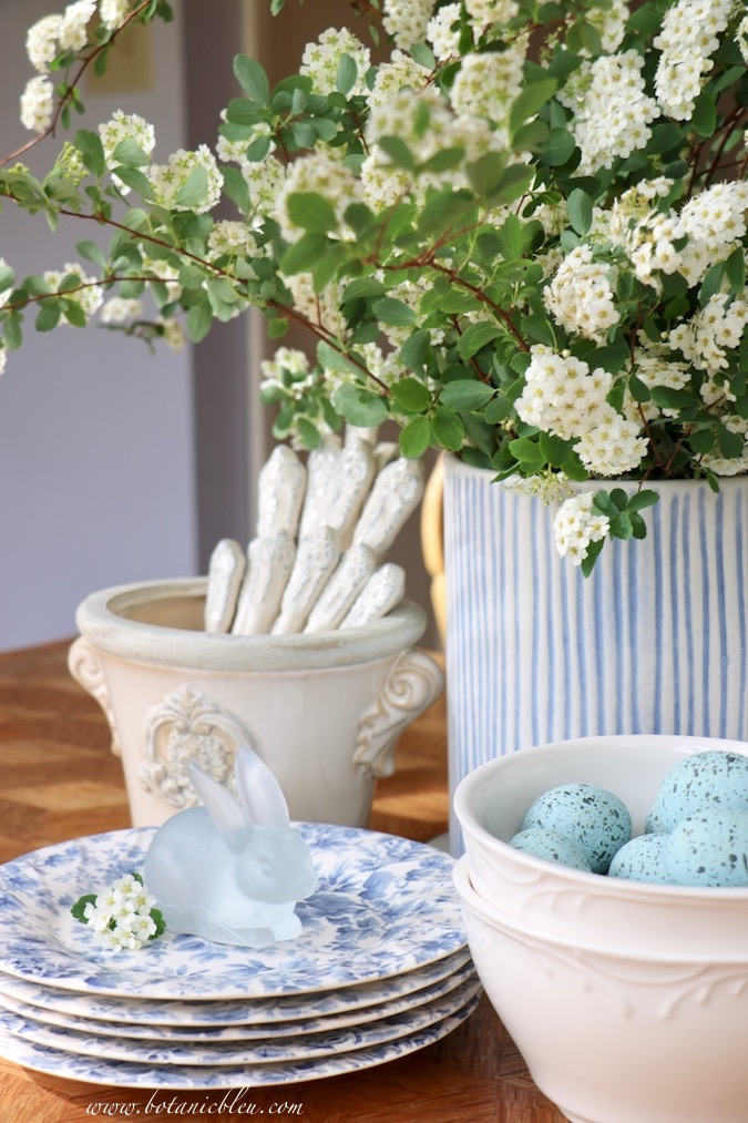 A blue and white striped vase holds a gorgeous white bridal wreath spirea flower arrangement for Easter
