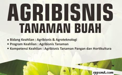 Download Rpp Mata Pelajaran Agribisnis Tanaman Buah Smk Kelas XI XII Kurikulum 2013 Revisi 2017 / 2018 Semester Ganjil dan Genap | Rpp 1 Lembar