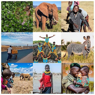 Duke and Duchess of Sussex awareness of African Social Justice and 21 days to tour of africa
