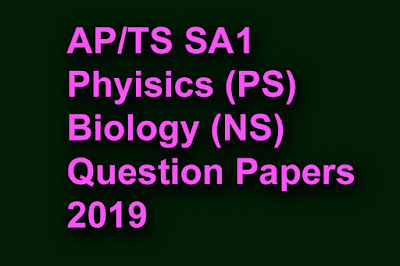 sa1-phyisics-ps-biology-ns-Question-Papers-2019