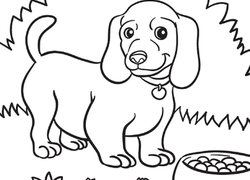 Adorable Dog Eating - Coloring Pages