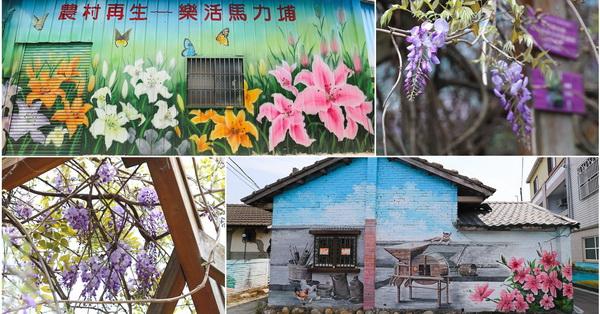 台中新社|馬力埔彩繪社區|在地特色彩繪巷|紫藤花