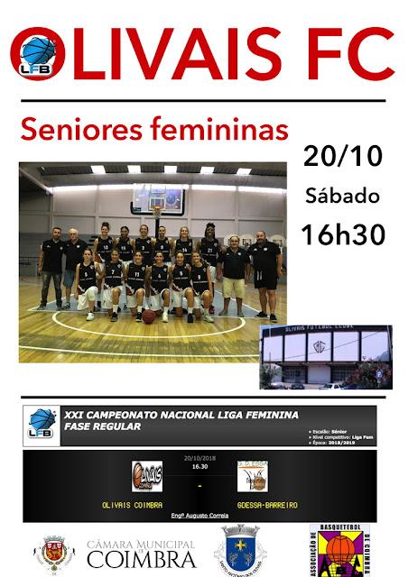 cartaz-sf-20-10.jpg