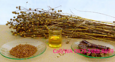 Comparison  Best Coconut Oil and Linseed Oil