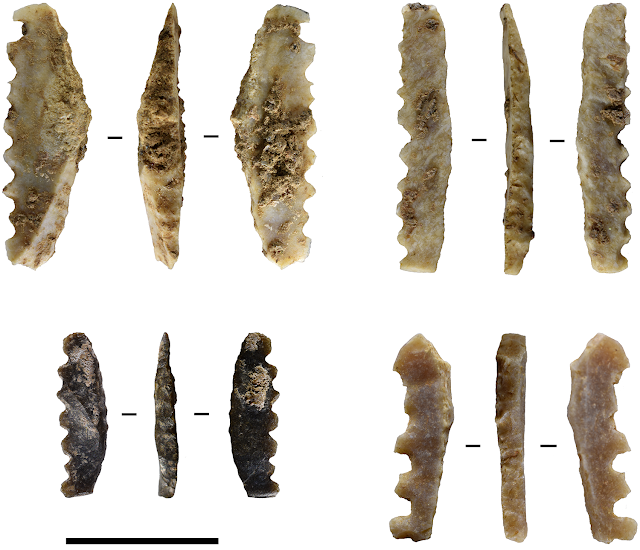 Tiny tools point to specialist skills of ancient Indonesians
