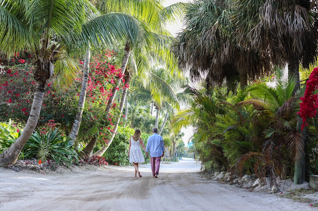 gorgeous path on north captiva island with palm trees