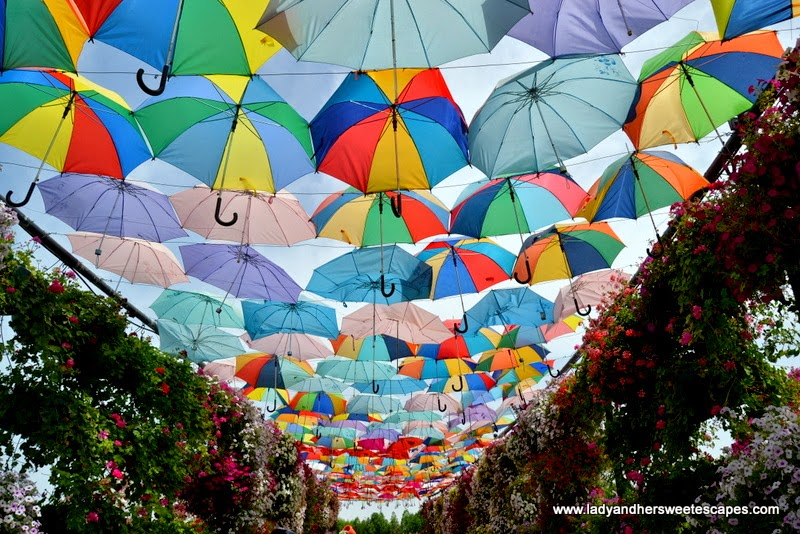 Umbrella Pathway at Dubai Miracle Garden