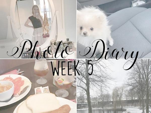 Photo Diary Week 5