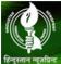 Hindustant Newsprint logo