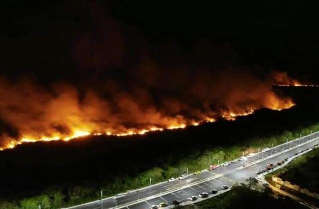 Incendio termina con más de 200 hectáreas de manglares en Campeche