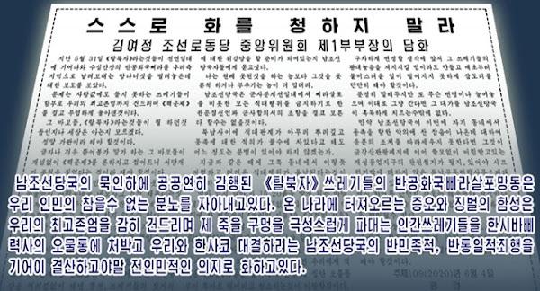 Kim Yo Jong's June 4th statement