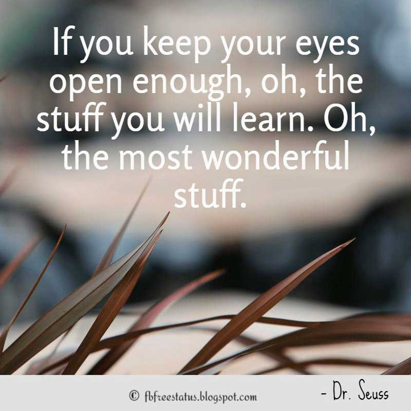 Dr. Seuss Quote: If you keep your eyes open enough, oh, the stuff you will learn. Oh, the most wonderful stuff.