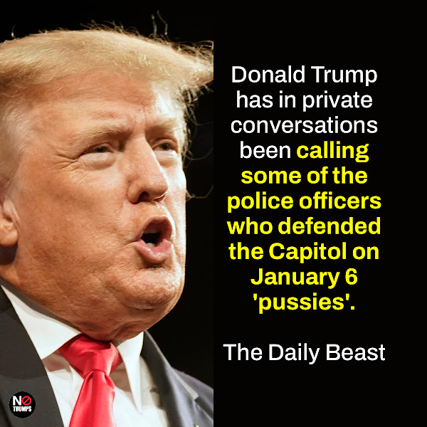 Donald Trump has in private conversations been calling some of the police officers who defended the Capitol on January 6 'pussies'. — The Daily Beast