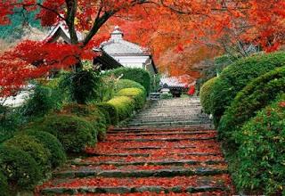 Японското понятие за красота