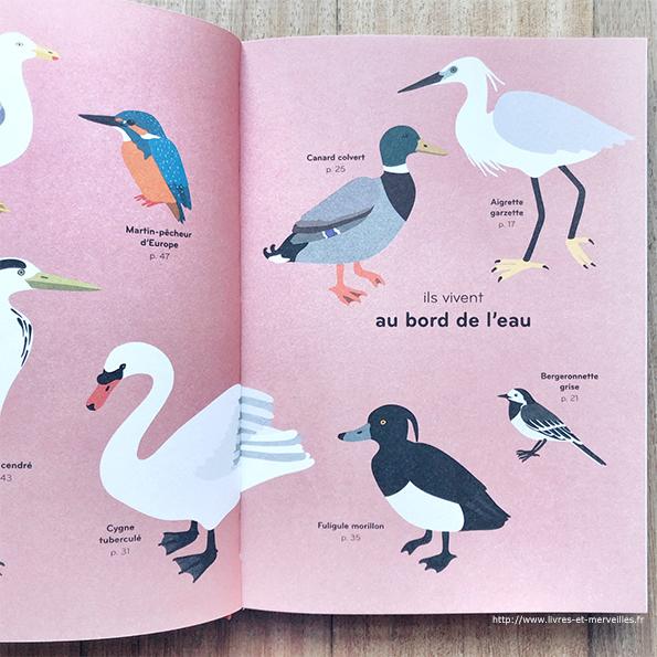 Ornithorama de Lisa Voisard