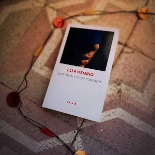 Luz ou le temps sauvage Elsa Osorio roman argentine disparus dictature buenos aires avis lecture blog