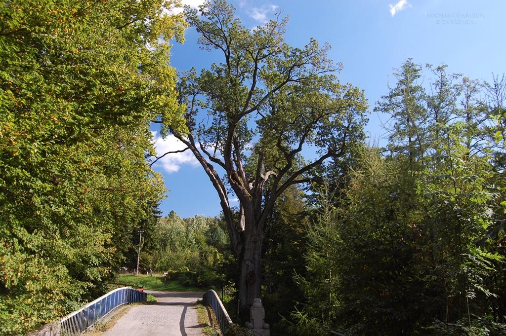 Liksajny, most nad Kanałem Elbląskim
