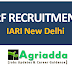 JRF Recruitment in IARI New Delhi | Msc Agriculture Job