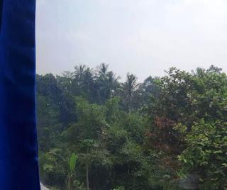 Pemandangan hijau dijalur kereta api Sukabumi-Bogor
