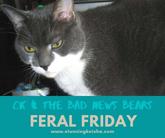 Feral Friday: CK Joins the Bad News Bears