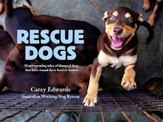 Rescue-Dogs-Book-Carey-Edwards