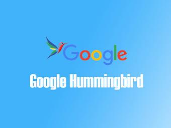 Hummingbird Güncellemesinin Sıralamalara Etkisi