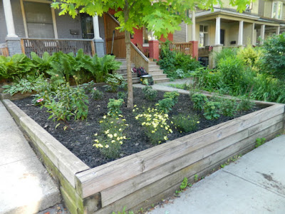 Leslieville Toronto Front Garden Weeding and Makeover After by Paul Jung Gardening Services--a Toronto Organic Gardener