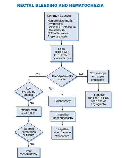 ملف كامل لتسهيل تشخيص الأمراض
