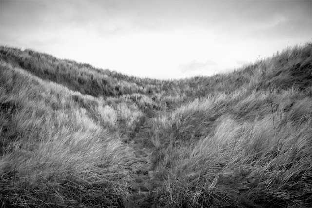 Black and white photograph of sand dunes between Seahouses & Bamburgh by Martyn Ferry Photography