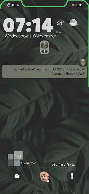 اداة Bioprotect XS جلبريك الايفون على نظام 12 إلى 13 IOS