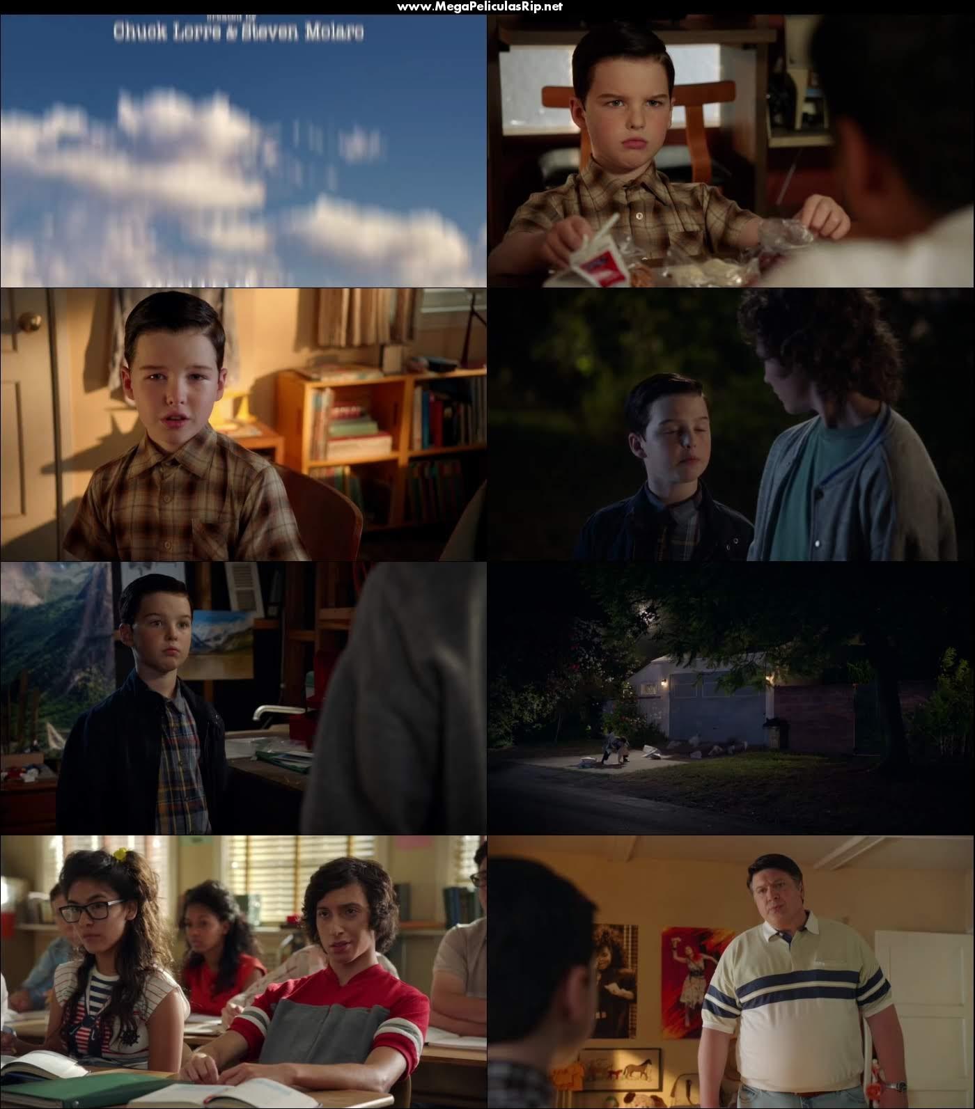Young Sheldon Temporada 2 720p Latino