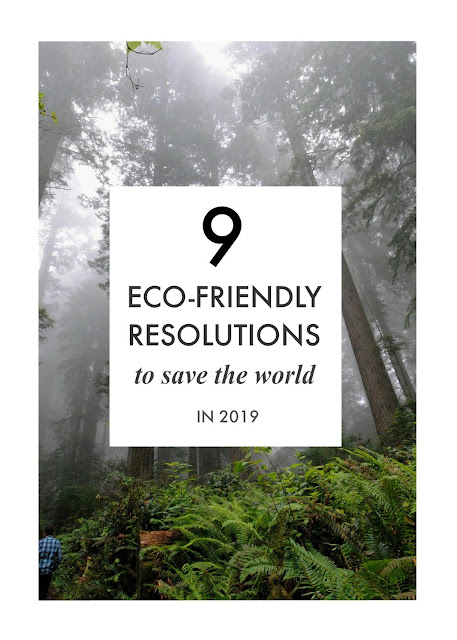 Nine Eco-Friendly Resolutions to Save the World in 2019