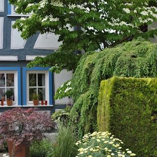 Ein Blick in private Gärten