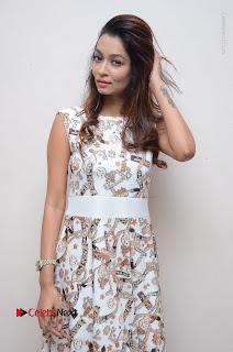 Telugu Actress Reshmi Thakur in Long Dress at Plus One ( 1) Audio Launch  0040.jpg