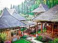 Dafar 20 Hotel Bagus Untuk di Dekat Situ Patenggang Ciwidey Bandung