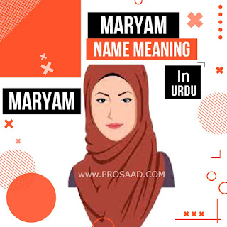 Maryam Name Meaning in Urdu & Mariam Name Other Spelling and Info