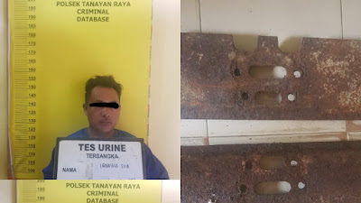 Tiga Tersangka Curat Diciduk Polisi Dilokasi Penangkaran Ikan Arwana.