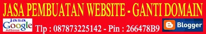 cara seting domain tanpa www dengan webmaster google