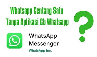 Cara Whatsapp Centang Satu (✓) Tapi Online Tanpa Aplikasi GBWhatsapp, Bisakah?