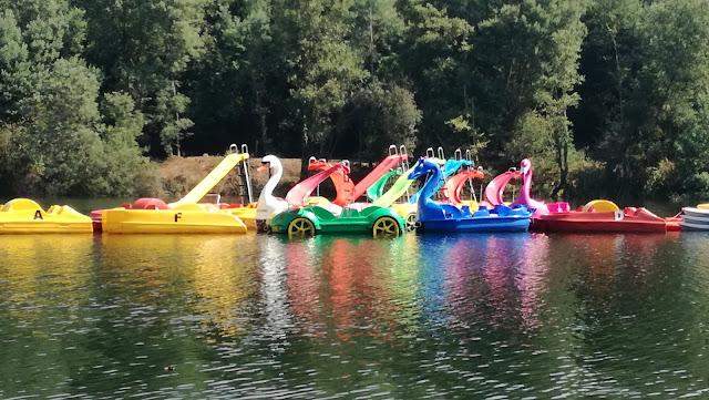 Gaivotas e Kayaks para aluguer