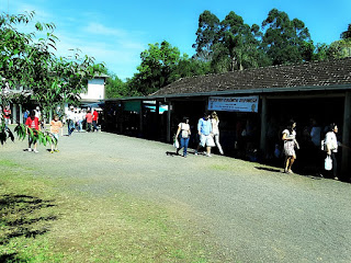 Feira da Colônia Japonesa de Ivoti