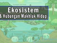 Ekosistem dan Hubungan Mahluk Hidup Materi IPA Tema 5 Kelas 5 SD Kurikulum 2013
